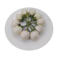 White Eggplant 10pcs