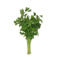 Celery 1bundle