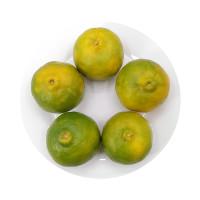 Aung Pan Orange 5pcs