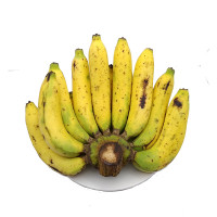 Cavendish Banana 1bundle