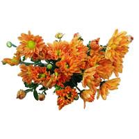 Gold Falar Flower 1bundle