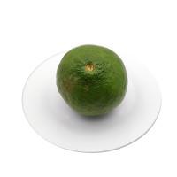 Citrus Limon 1pcs